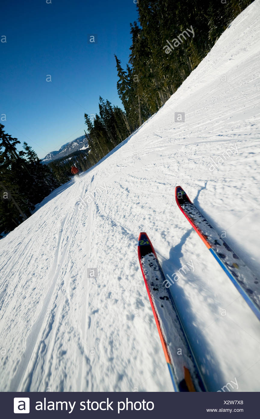 Skiis carving in mid turn, groomed conditions, Mt. Washington, Courtenay, Vancouver Island, British Columbia, Canada - Stock Image