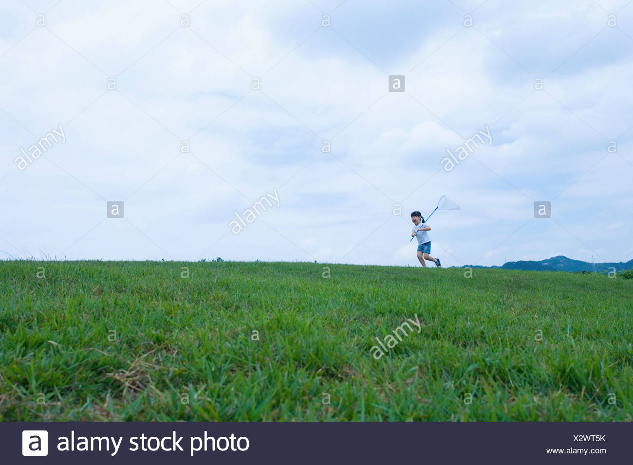 girl running through the field holding dragonfly net - Stock Image