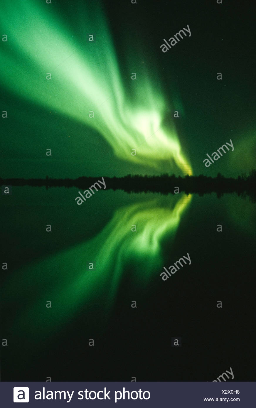 Alaska. Aurora Borealis lights up the Alaskan interior night sky. - Stock Image