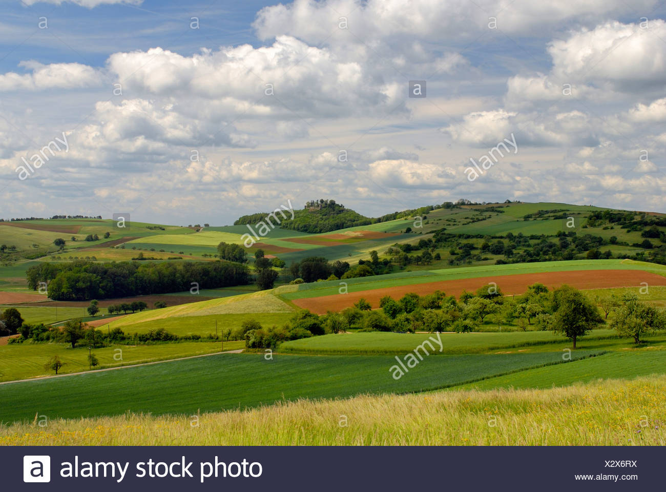 Hegau-Landscape - South Germany, Baden Wuerttemberg, Germany, Europe. Stock Photo