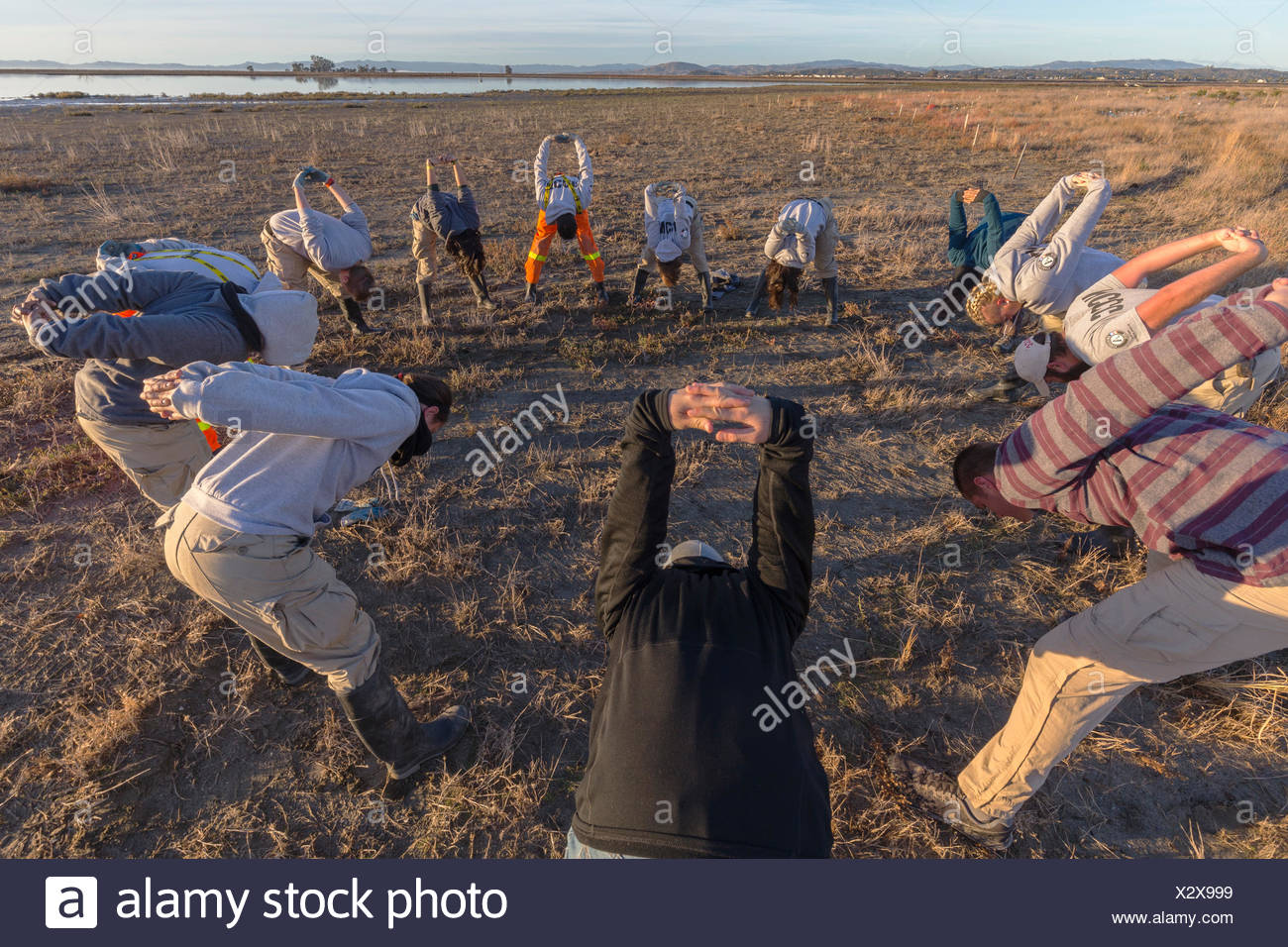 AmeriCorps volunteers stretch before planting native wetlands species in the restored Hamilton Field Tidal Marsh,Novato,California,USA - Stock Image
