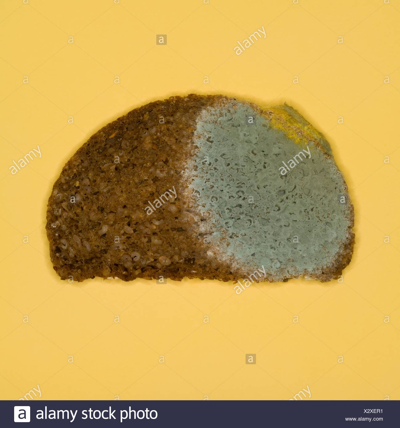 Moulded bread, elevated view - Stock Image