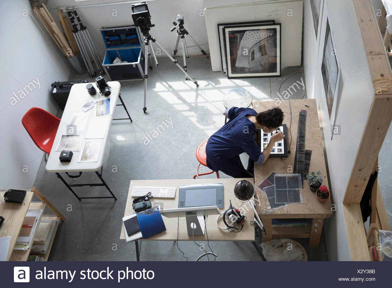 View from above female photographer reviewing photographic slides in art studio - Stock Image
