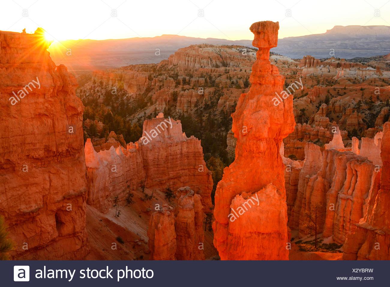 USA, United States, America, Utah, Canyon, North America, four corners, Colorado, Plateau, Bryce Canyon, National Park, sunrise, - Stock Image