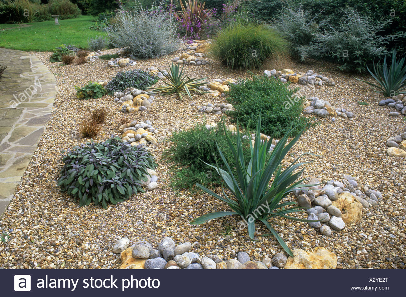 Gravel Garden Path Lawn stones pebbles Drought tolerant