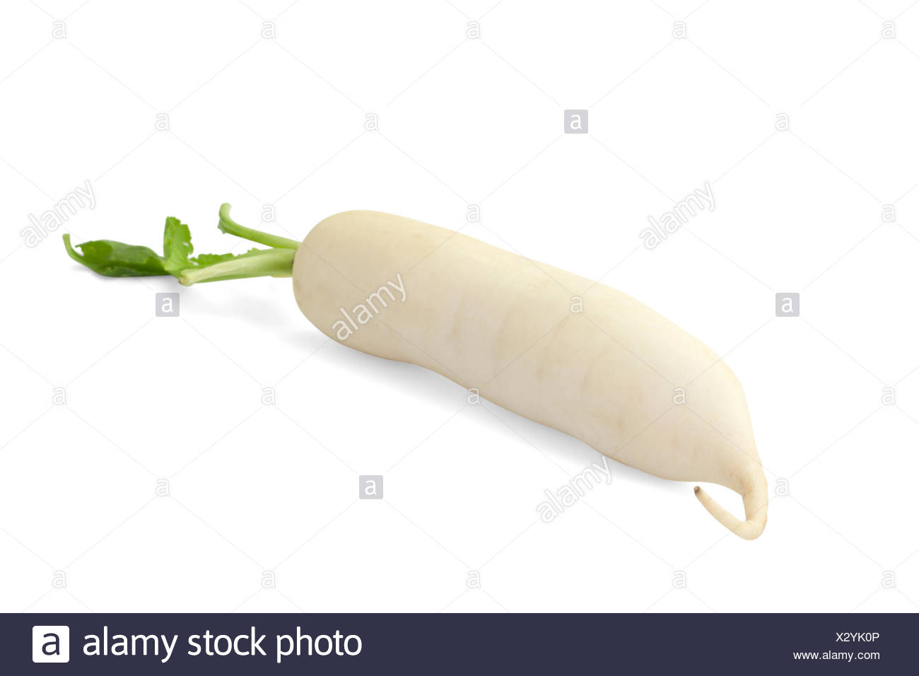 Daikon radish isolated on white background with path Stock Photo