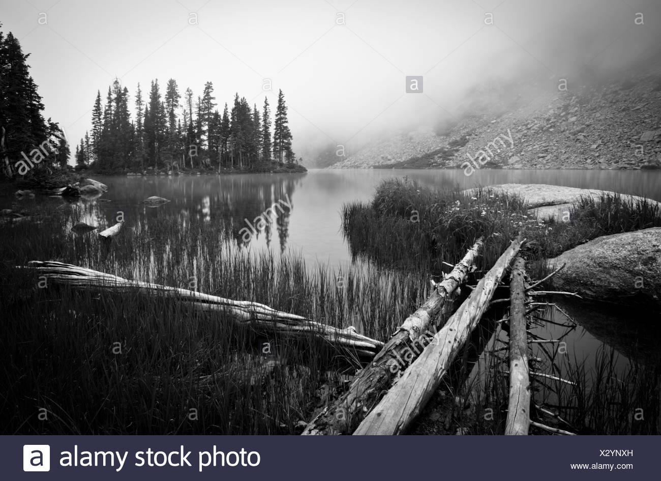 Logs leading to lake in fog. Westcliffe, Colorado, United States. - Stock Image