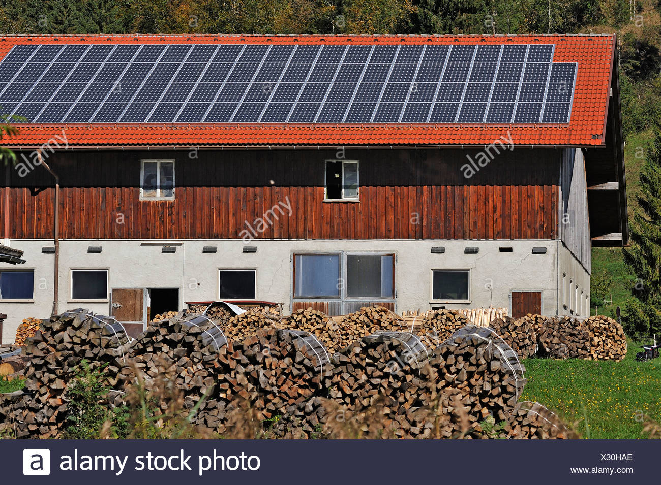 Farm with photovoltaic panels, stacked firewood at the front, Reuterhof farm near Bühl am Alpsee, Oberallgäu, Bavaria, Germany - Stock Image