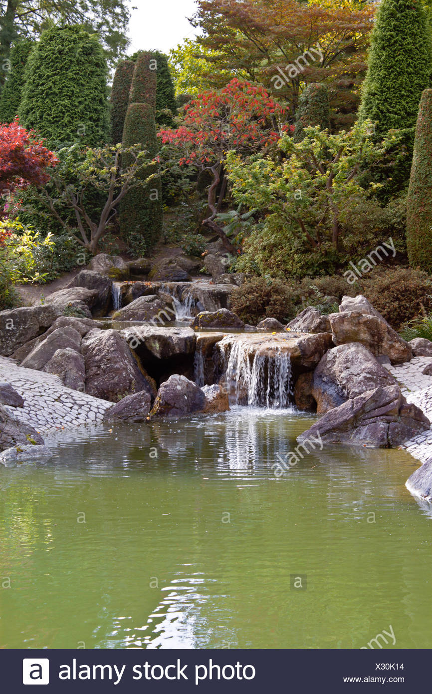 Japanese Garden With A Waterfall In Autumn   Stock Image