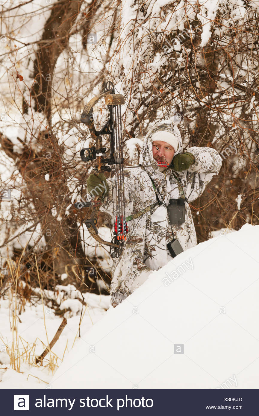 Male Bowhunter Draws Bow In Snow While Deer Hunting Stock
