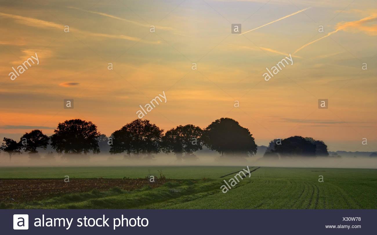 Break of dawn in autumn Stock Photo