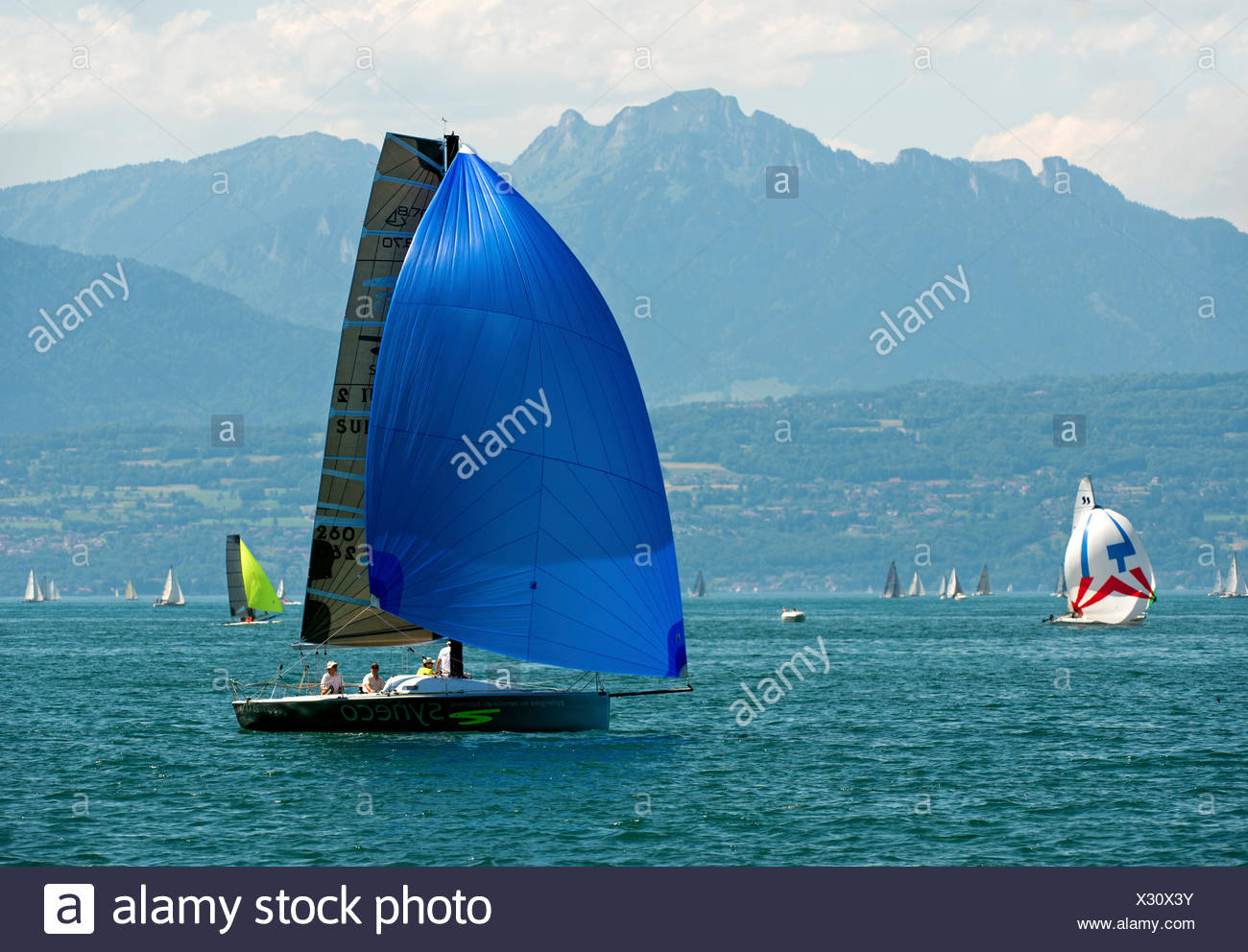 Sailboat of the Luthi 870 type with spinnaker headsail on Lake Geneva near Morges, Vaud Alps at back, Alpes vaudoises - Stock Image