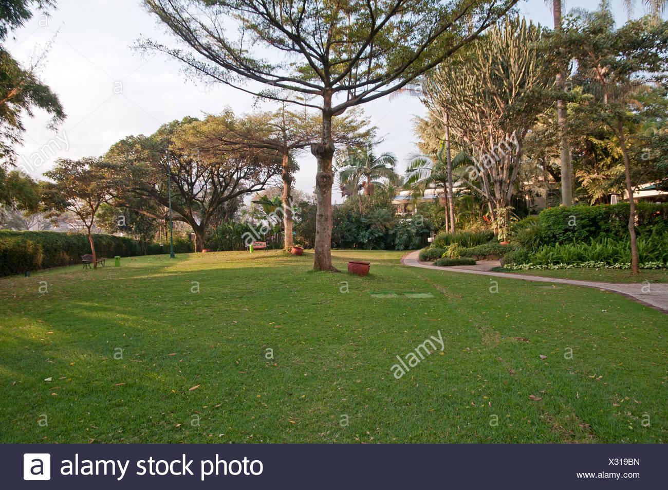 Nairobi Serena Hotel lawns and garden Nairobi Kenya - Stock Image