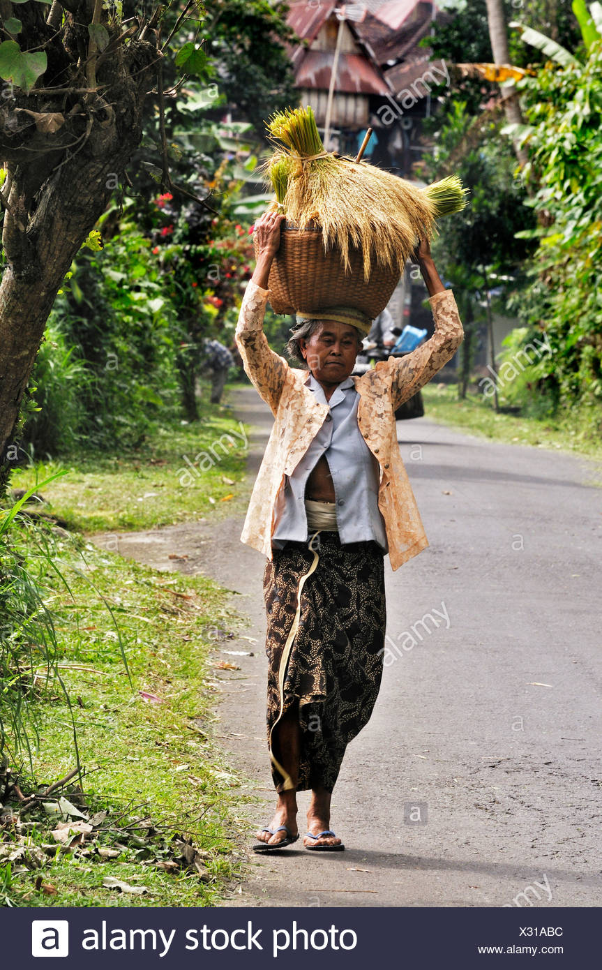 Balinese woman carrying harvested rice, Mengwi, Bali, Indonesia, South East Asia - Stock Image