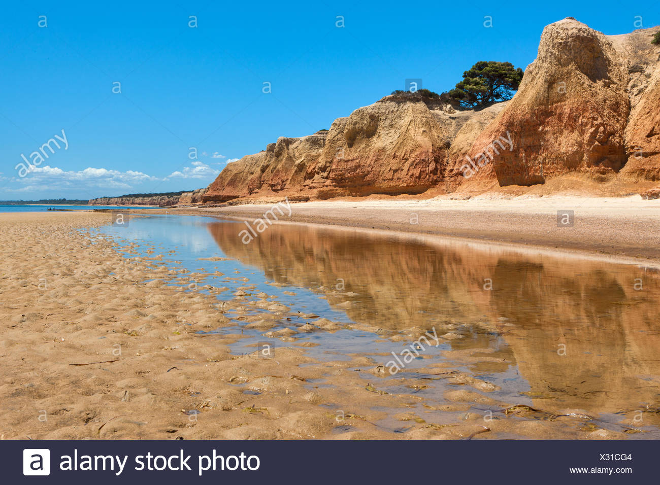 Red Banks, Australia, south Australia, Kangaroo Island, sea, coast, rock, cliff, - Stock Image