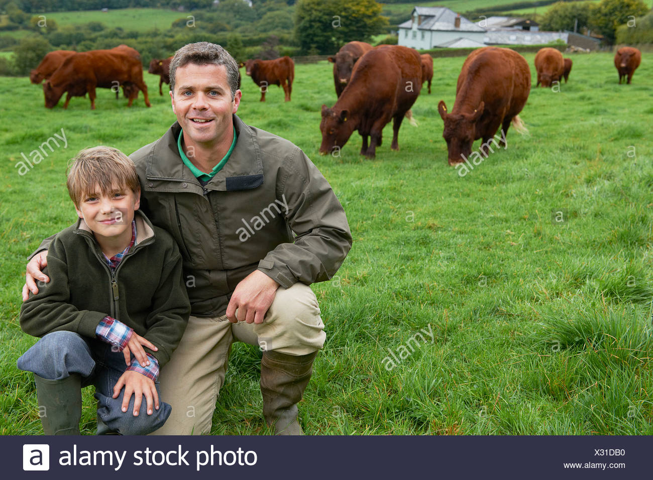 Father and son on farm with cows - Stock Image