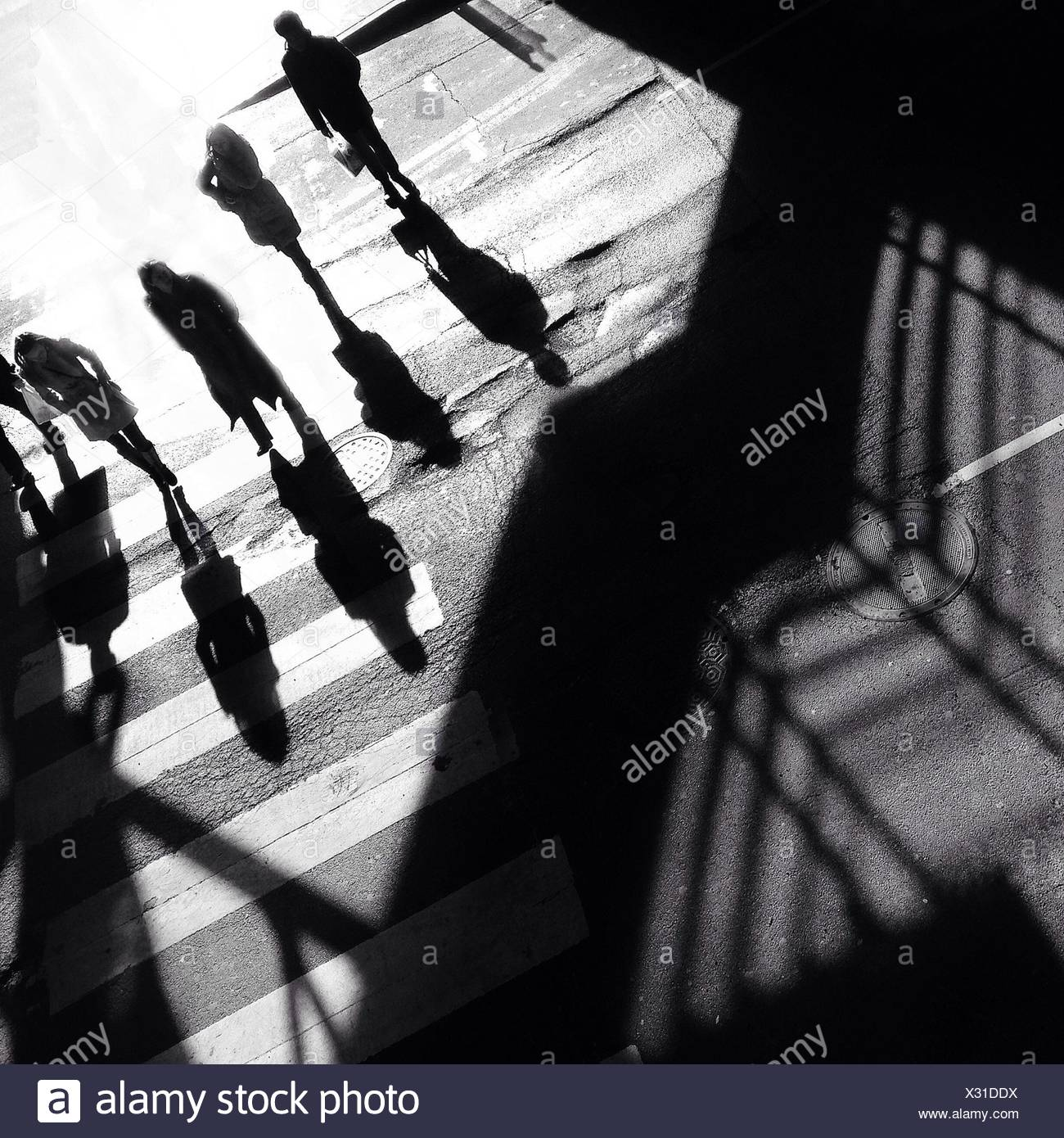 High Angle View Of People Walking On Zebra Crossing - Stock Image