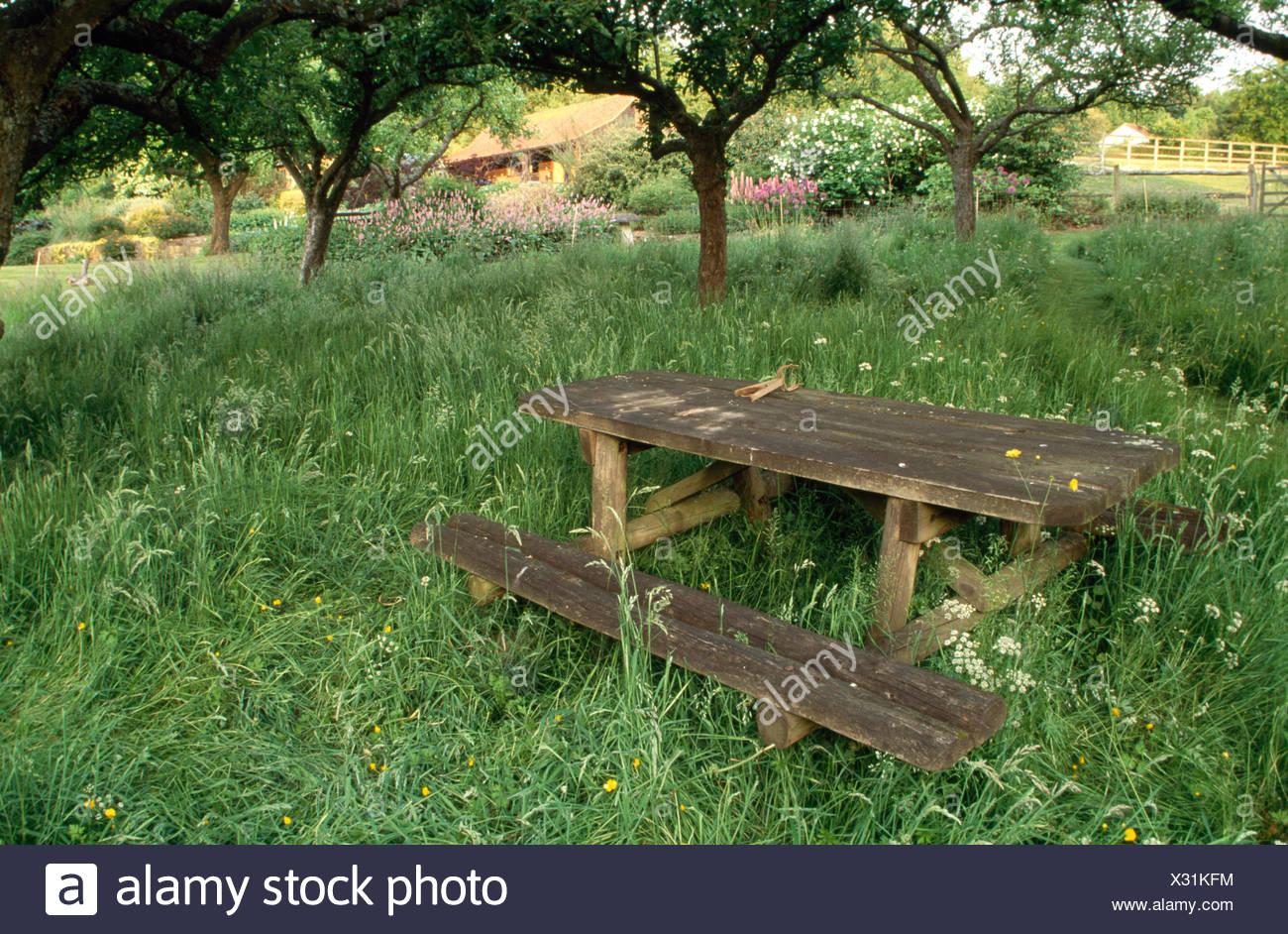 Incredible Rustic Wooden Bench Table In Long Grass Below Trees In Large Inzonedesignstudio Interior Chair Design Inzonedesignstudiocom