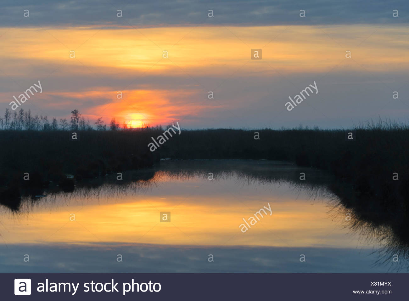 Goldenstedter Moor, Lower Saxony, Germany Stock Photo