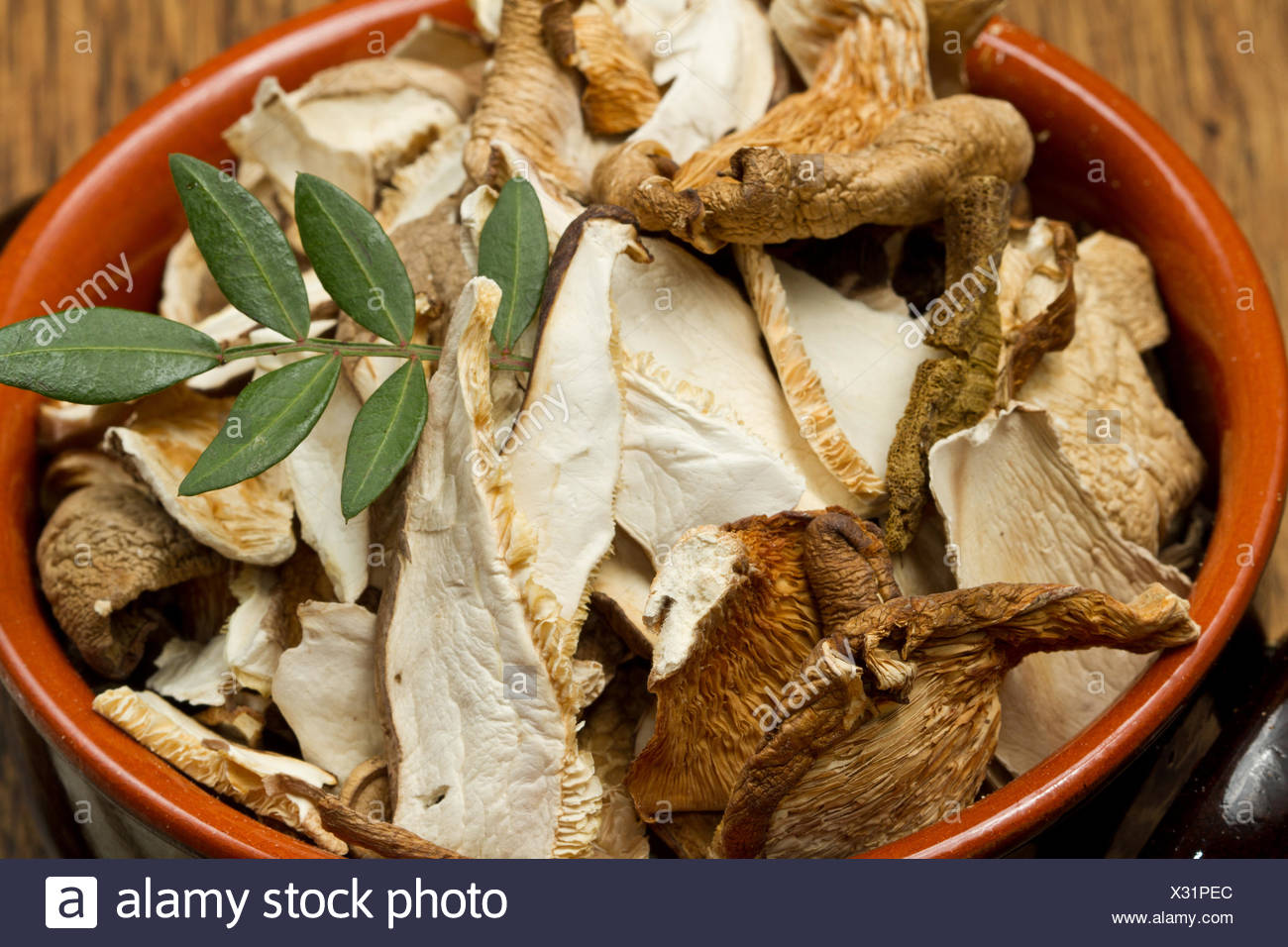 mushrooms dried wooden - Stock Image