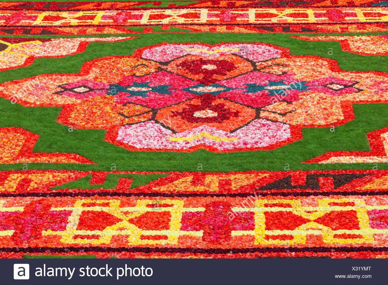 Belgium, Brussels, Grand Place, Flower Carpet Festival, Flower Pattern - Stock Image