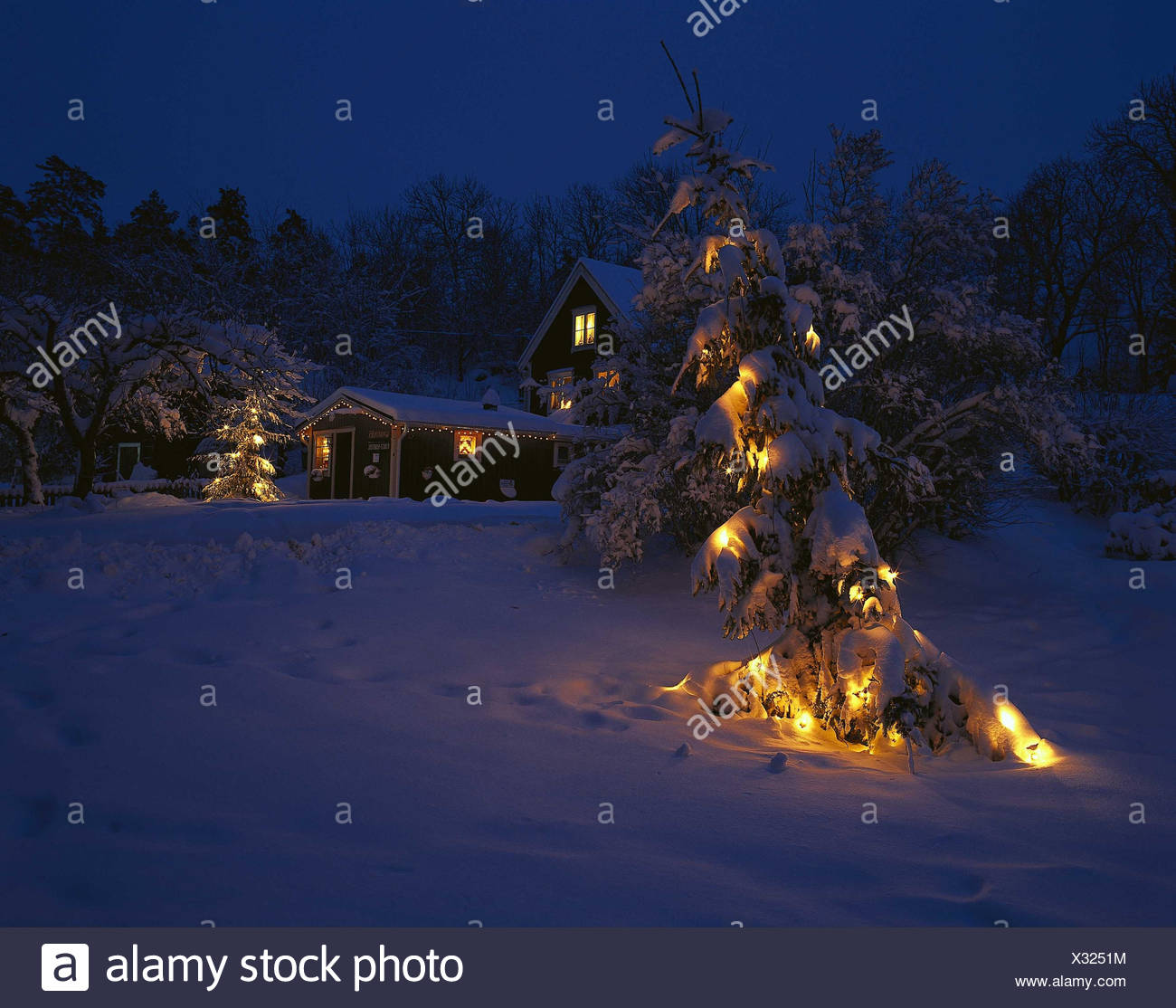 Christmas Tree Sweden: Sweden, Uppland, Wira Bruk, Residential House, Christmas
