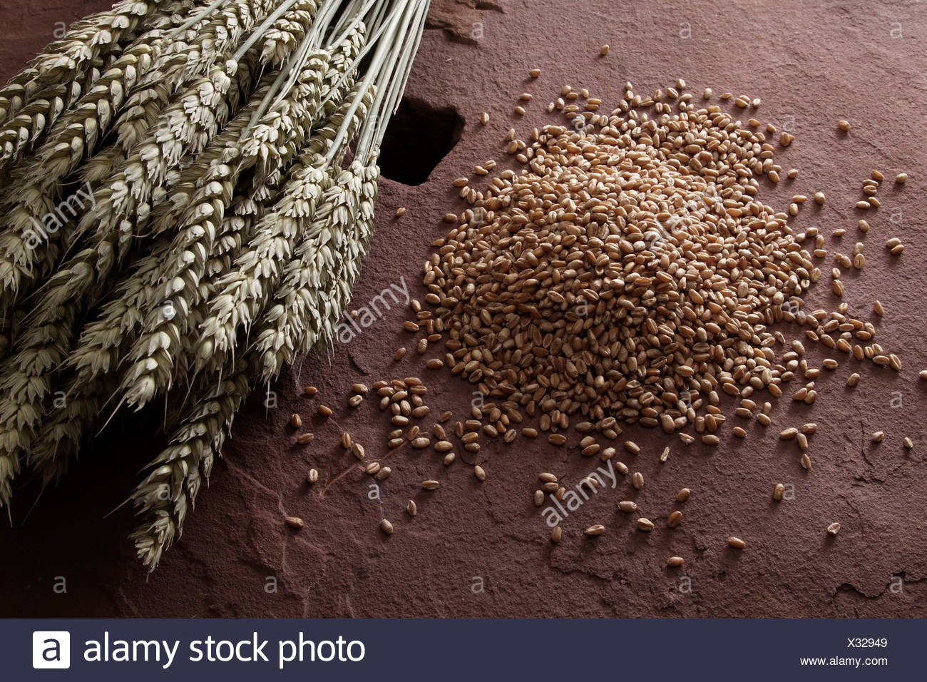 Wheat kernels (Triticum) with wheat ears on a millstone - Stock Image