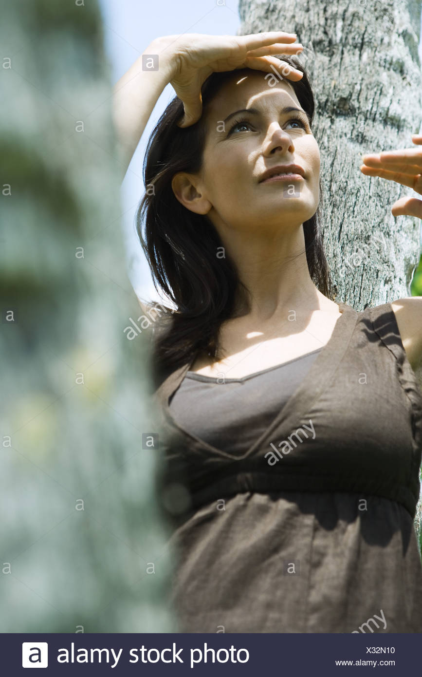 Woman leaning against tree trunk, shading eyes, looking up - Stock Image
