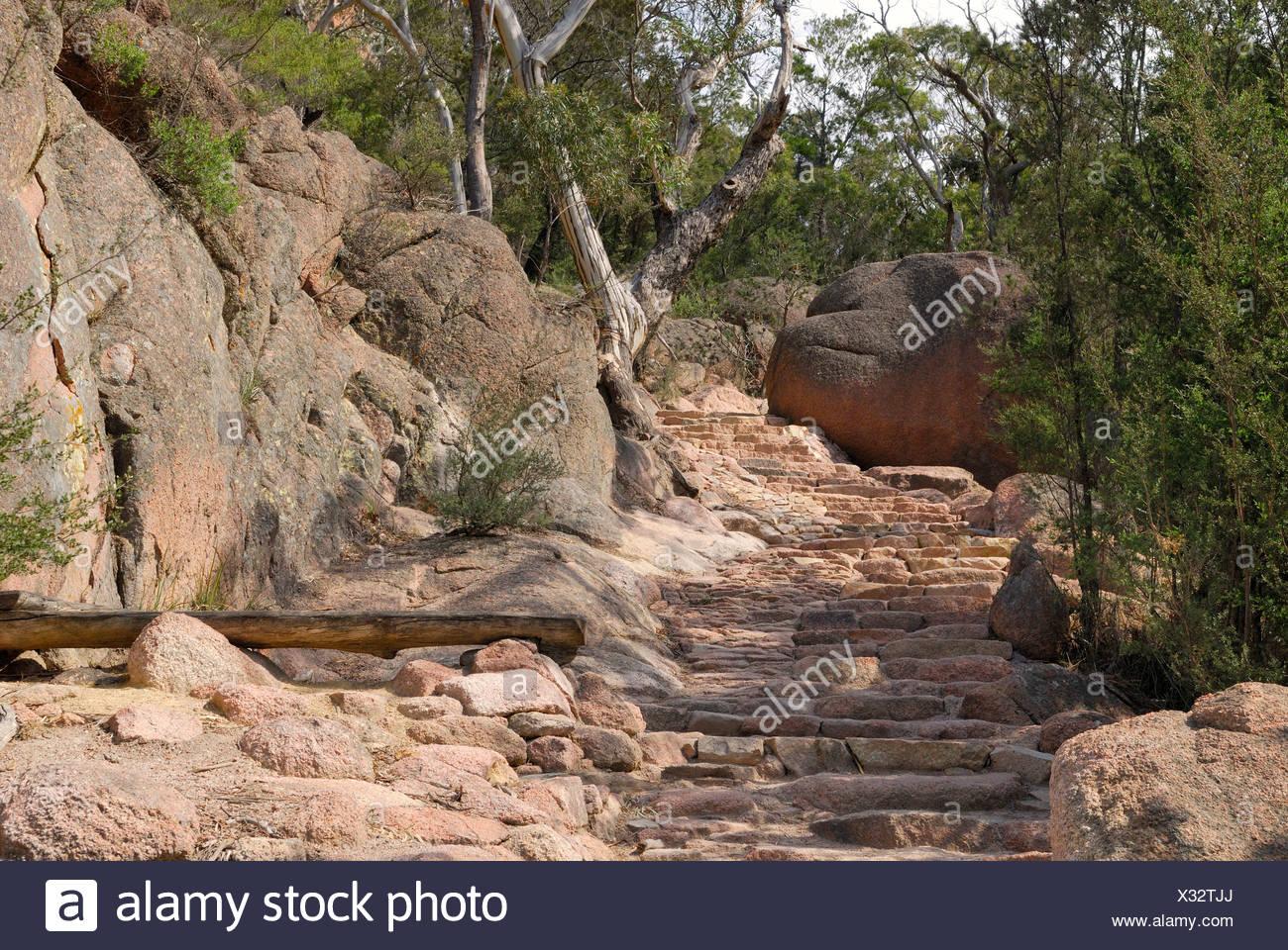 Footpath with stone steps through the red granite rocks of the Hazards Range, Freycinet Peninsula, Tasmania, Australia - Stock Image