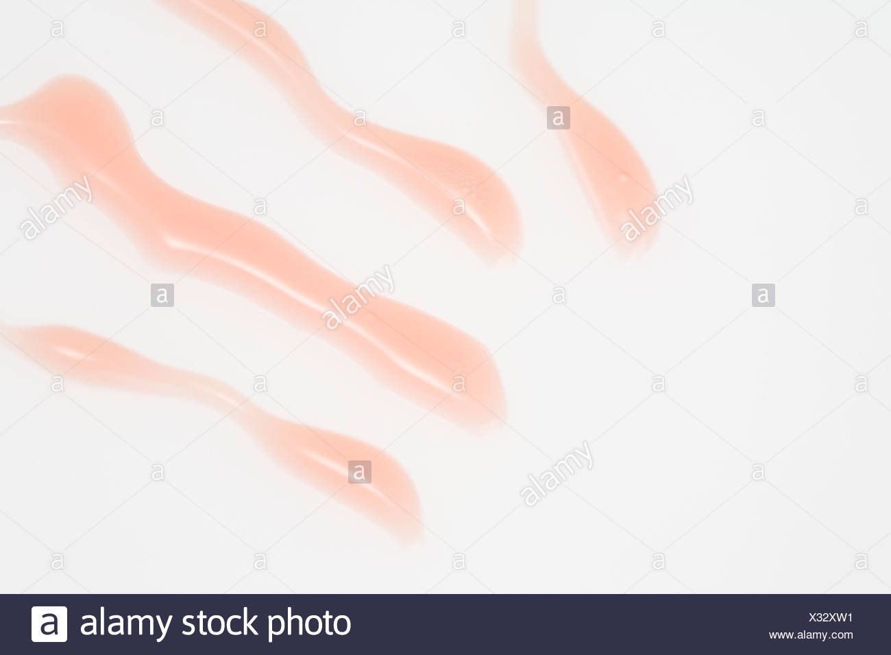 Lip gloss fluid - Stock Image