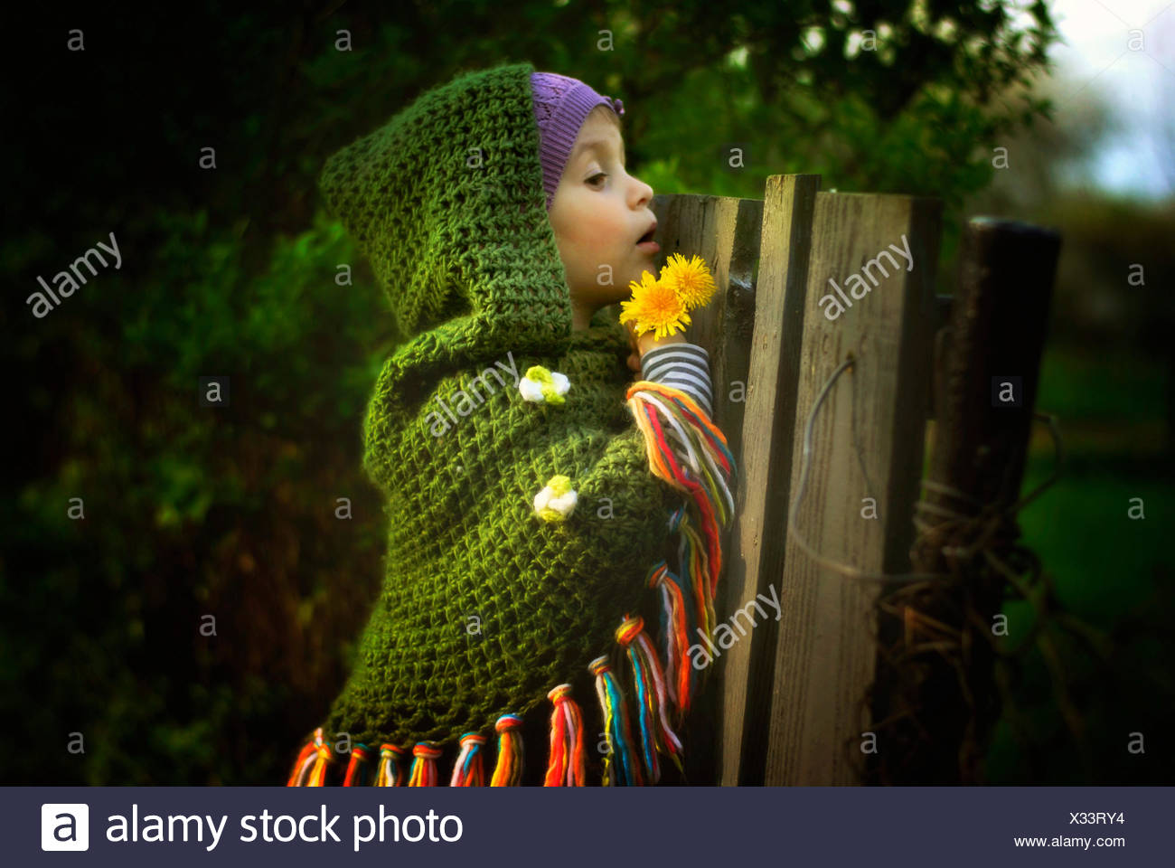 Young girl looking over fence - Stock Image