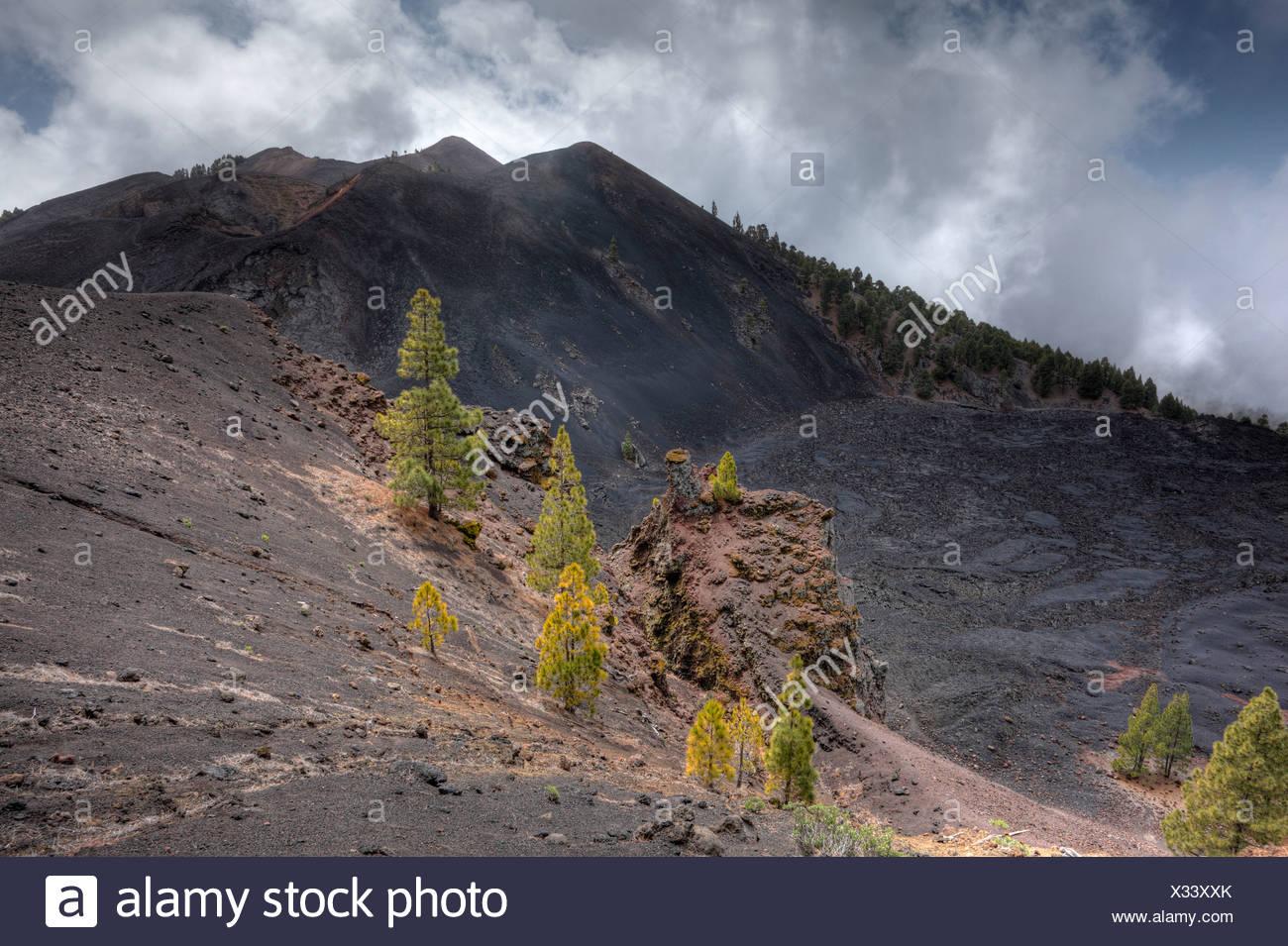 Duraznero volcano, field of lava of the San Juan eruption, 'Ruta de los Volcanes, Volcano Route, La Palma, Canary Islands, Spai - Stock Image