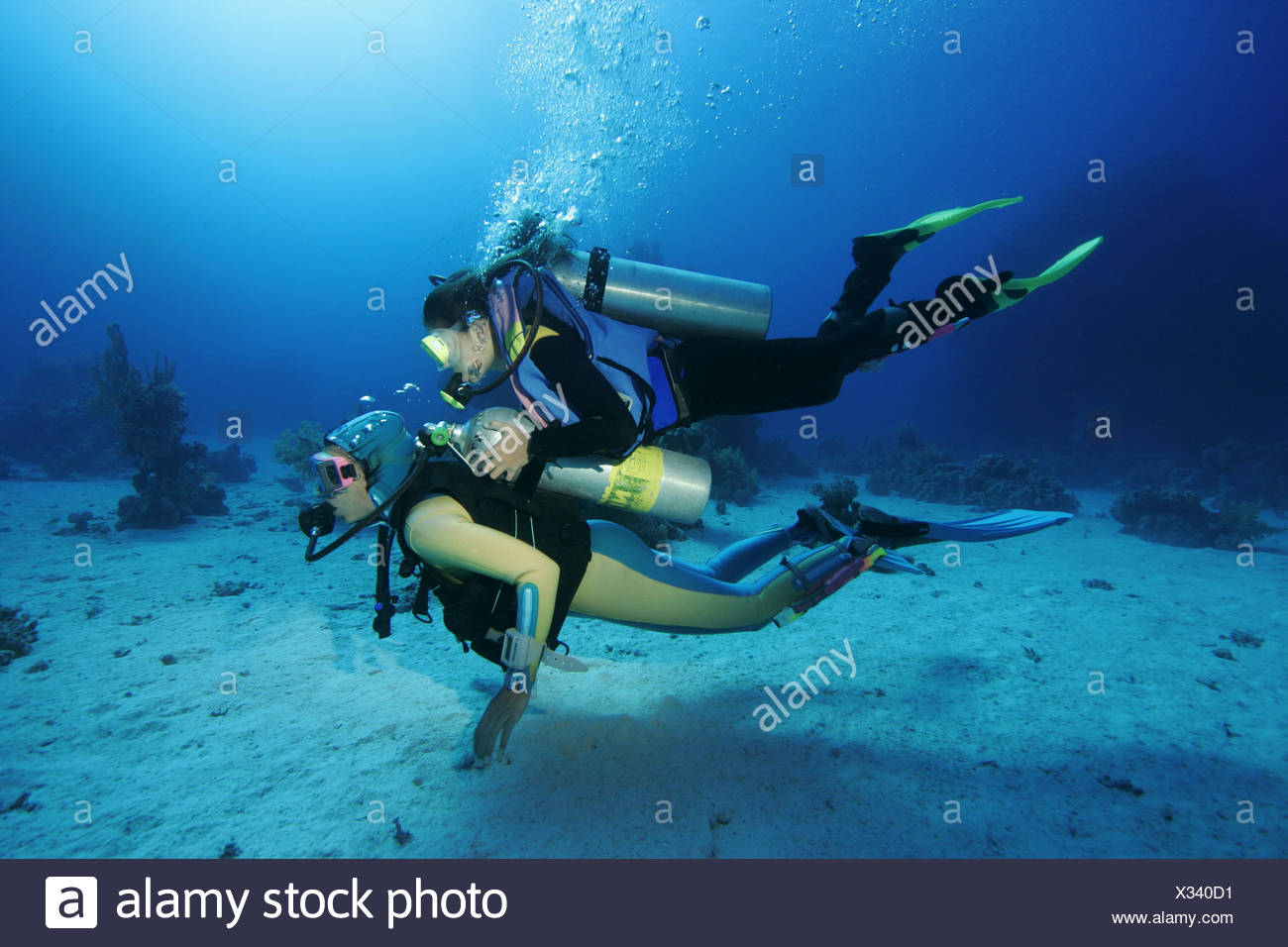 Mother an daughter are diving, the Red Sea, Egypt. - Stock Image