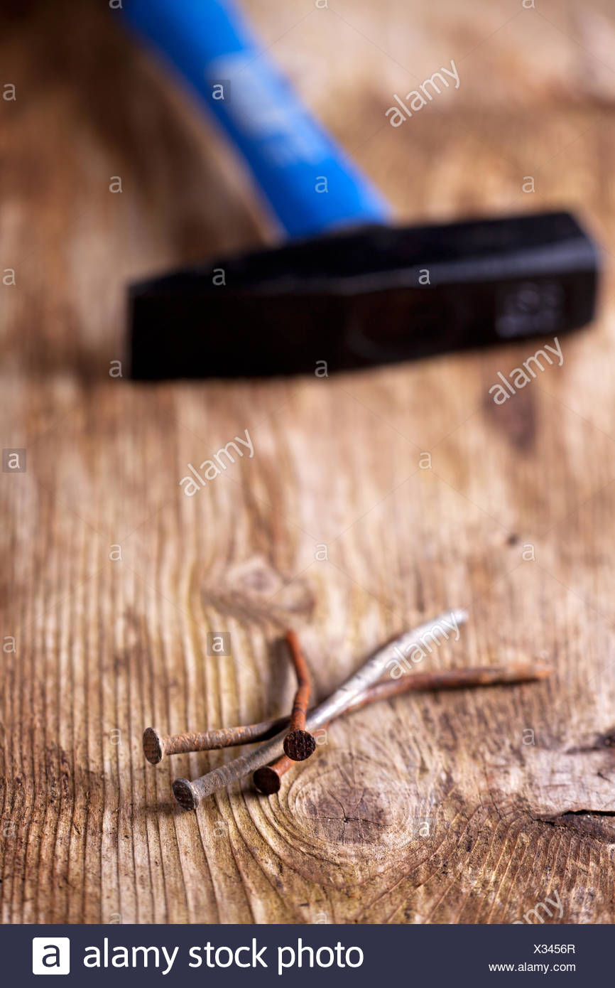 closeup of rusty nails on a wooden plank - Stock Image