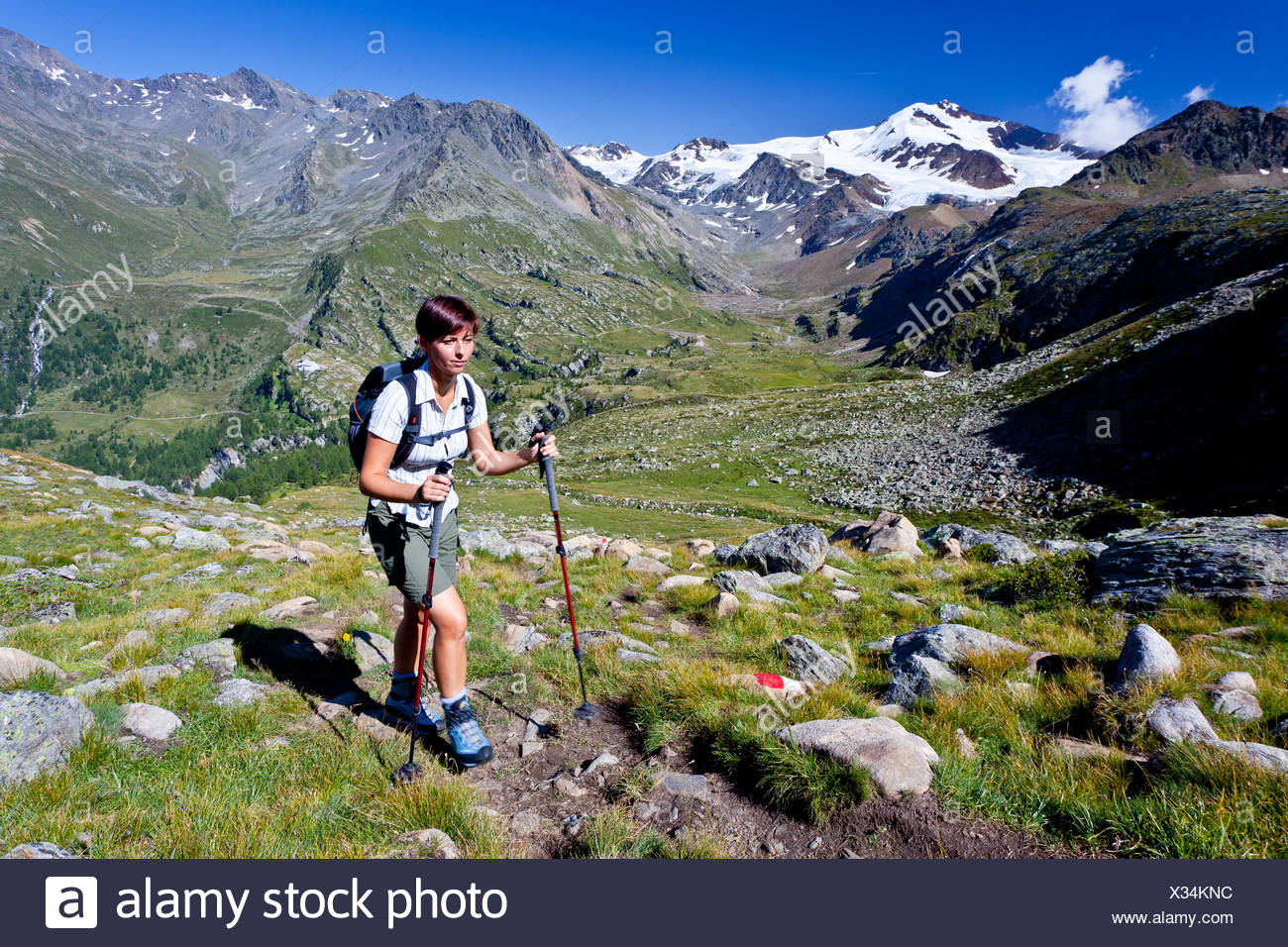 Hiker ascending to Mt. Rotspitz in the Martell vally, behind Mt. Cevedale and Mt. Zufallspitz, South Tyrol, Italy, Europe - Stock Image