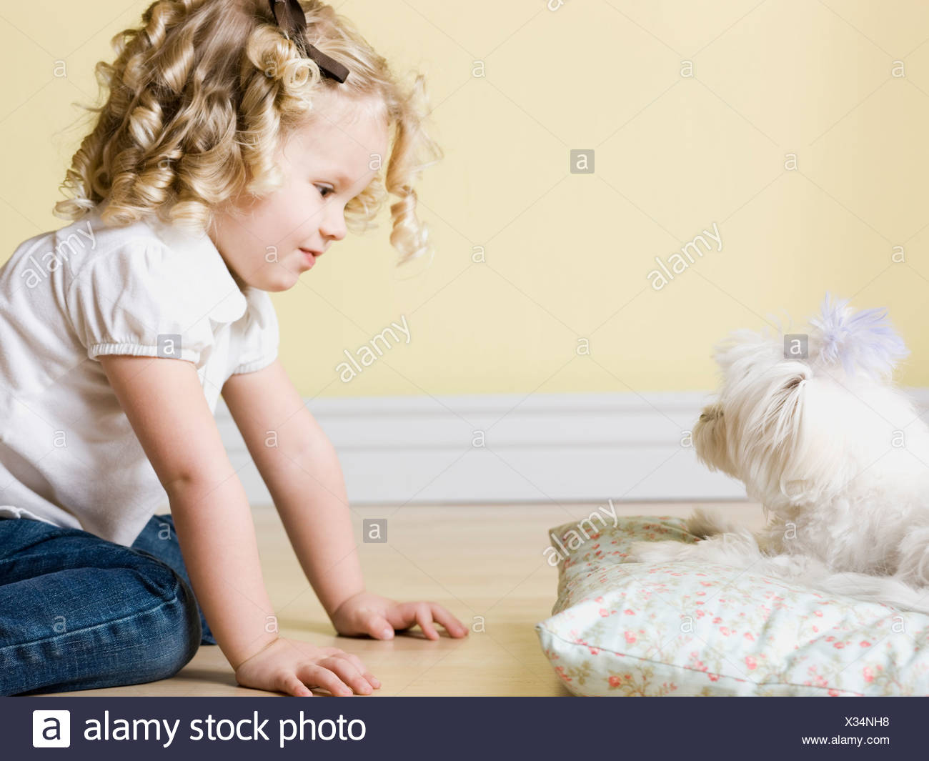 little girl with dog - Stock Image