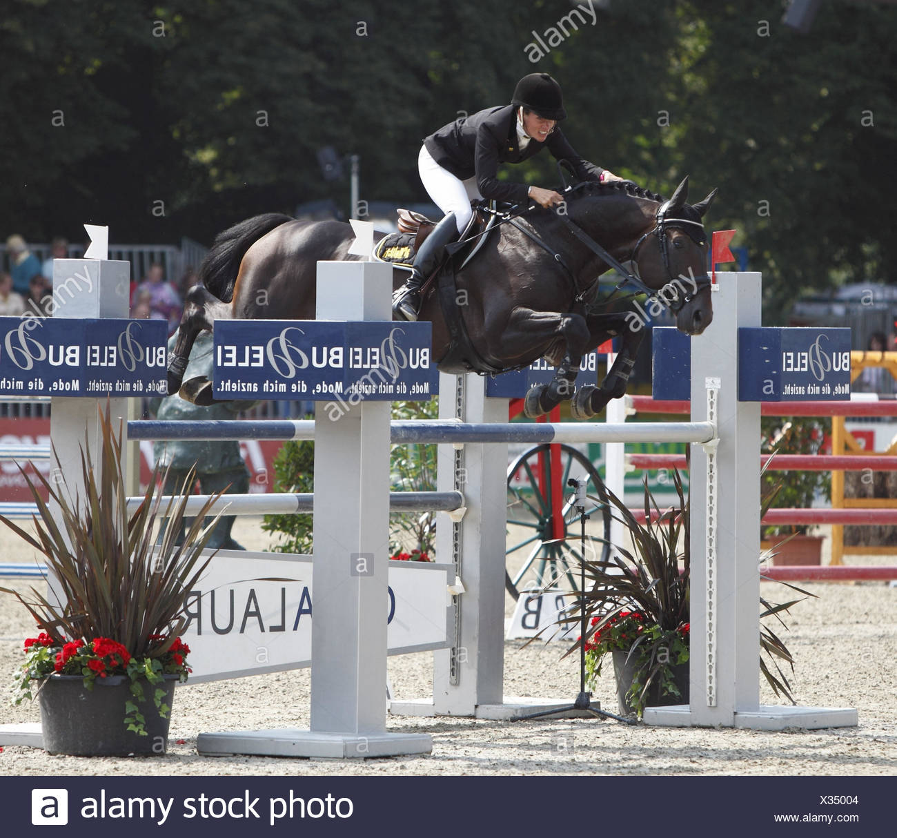Horse-racing,German championships jumping and training in 2010 in Münster,Springreiterinnen,Eve Bitter on Satisfaction 10, - Stock Image