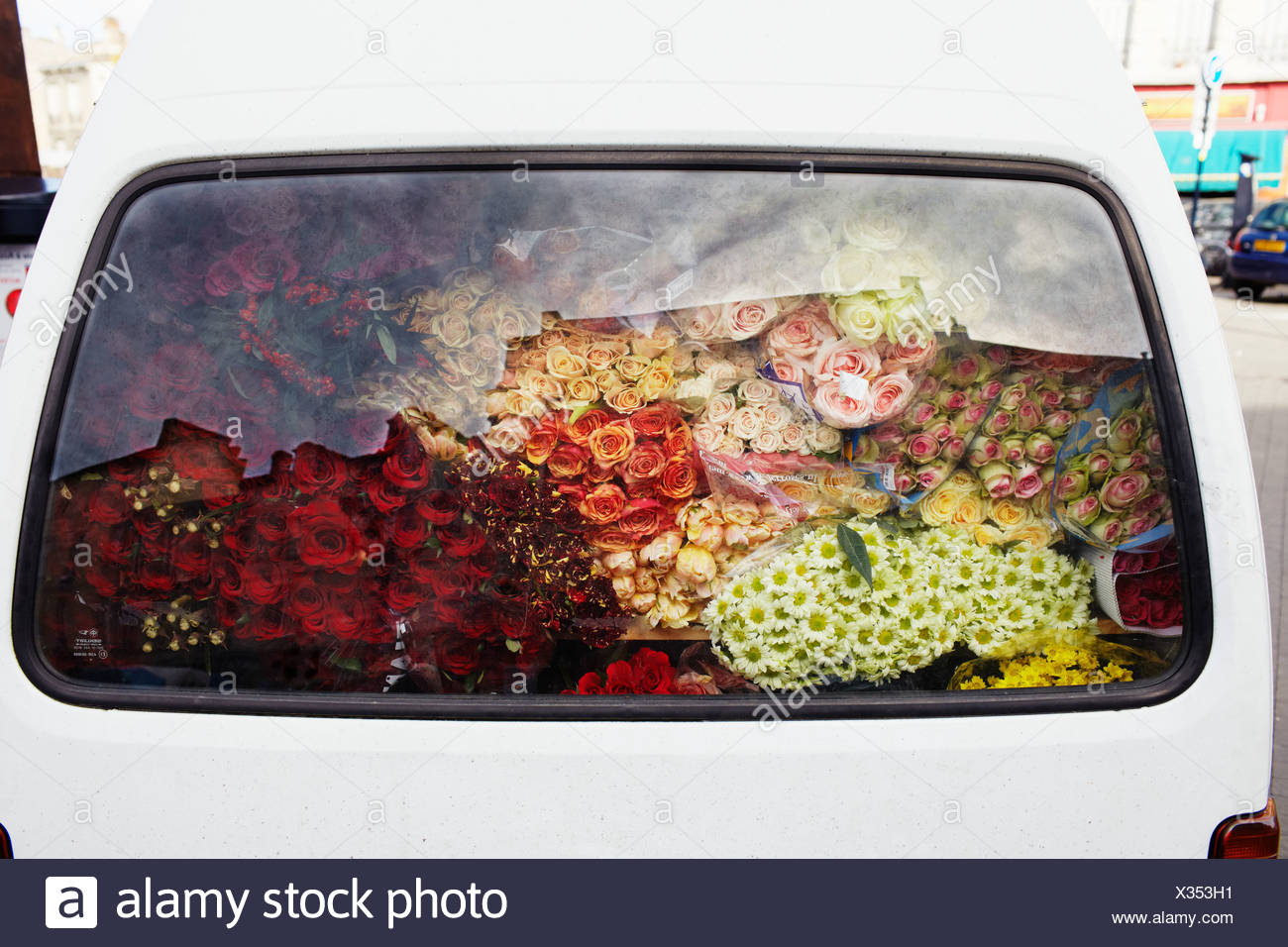 Flowers in car boot - Stock Image