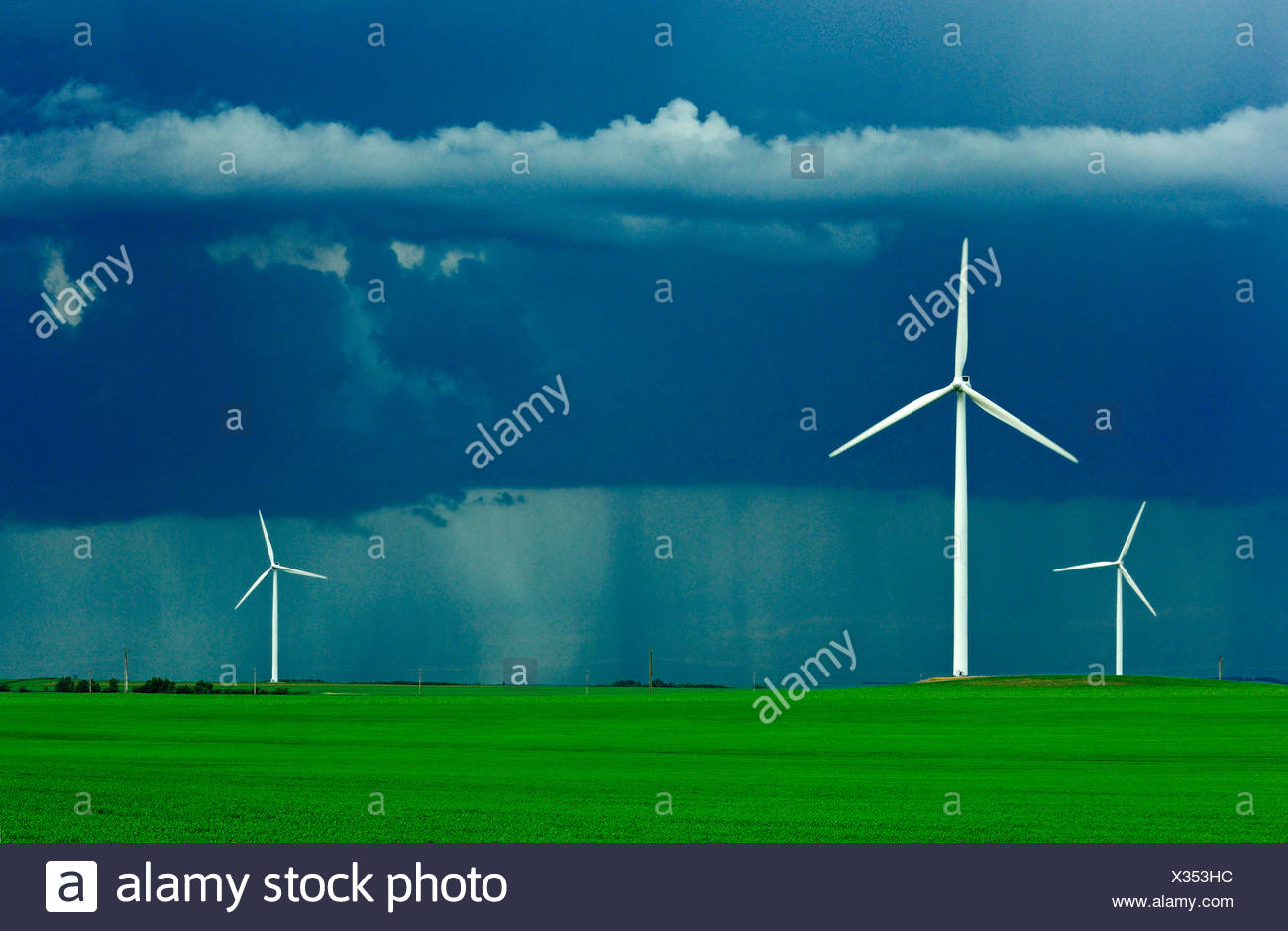 Wind turbines operate in an early growth wheat field with dark storm clouds above and a rain storm in the background / Canada. - Stock Image