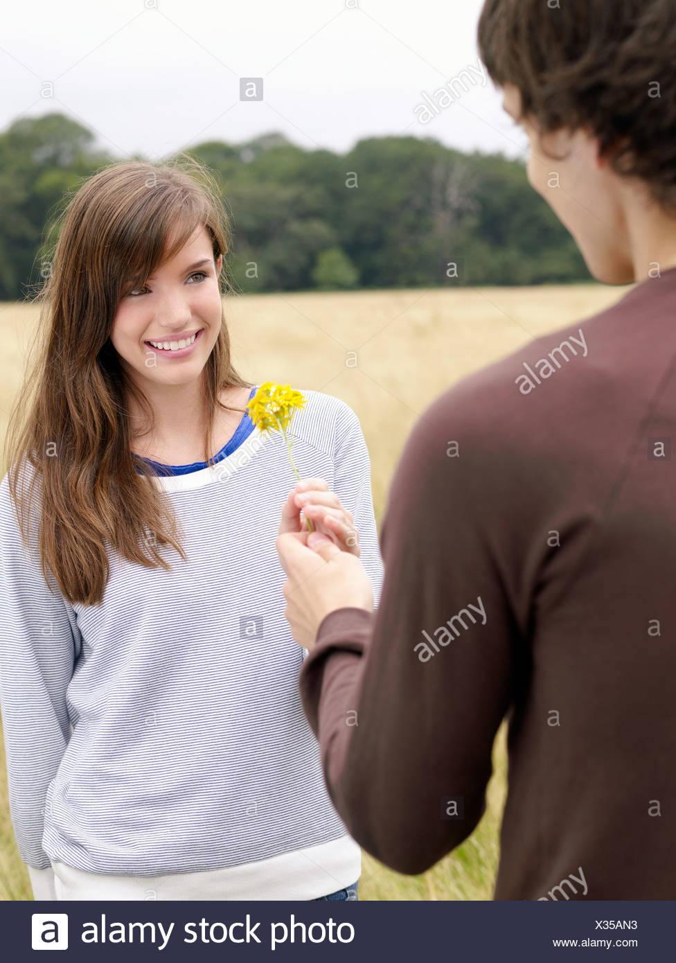 Boy giving girl a flower - Stock Image