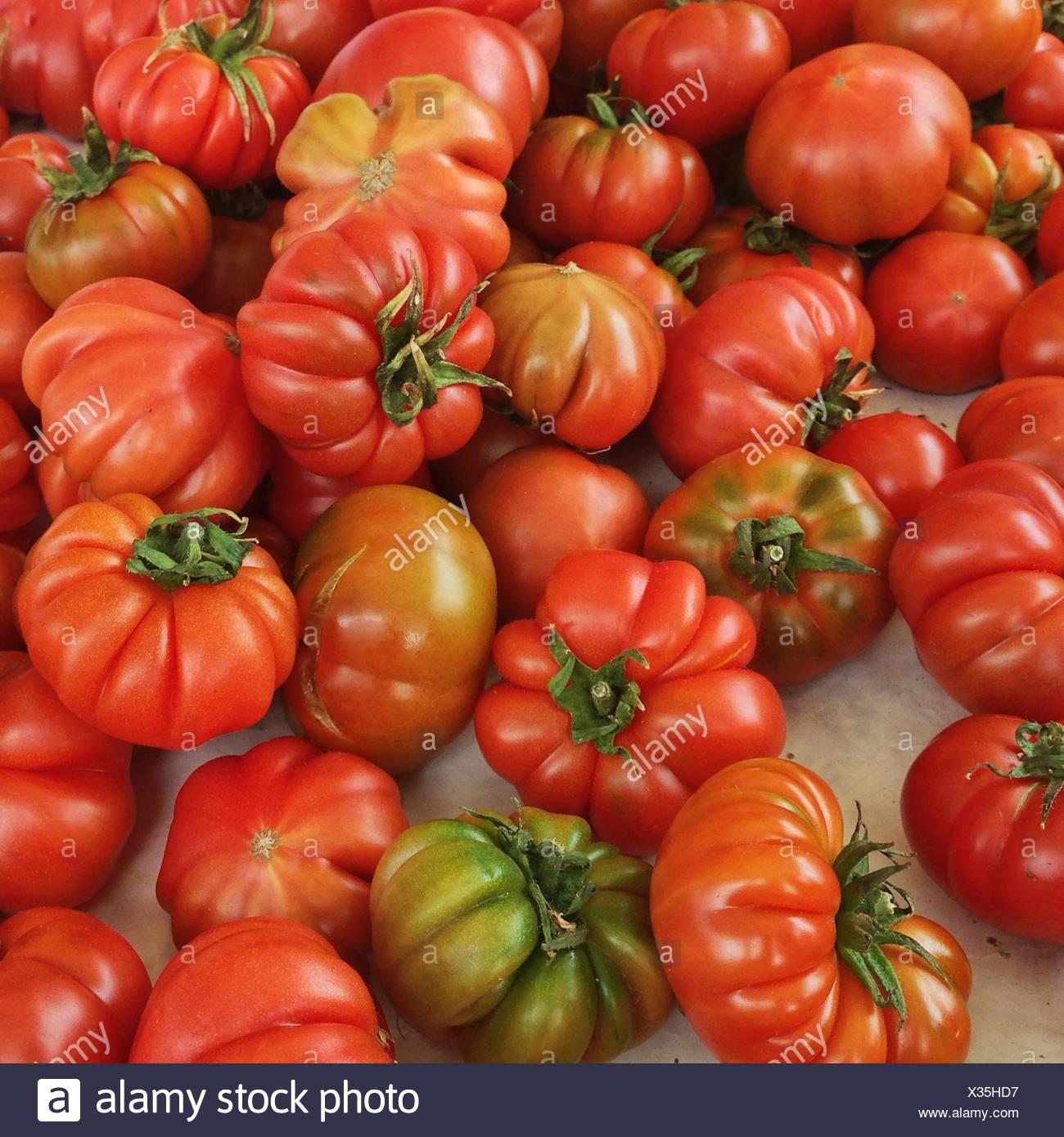 Italy, Tuscany, Tomatoes on market - Stock Image