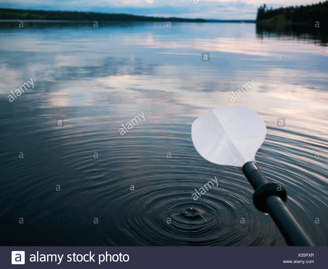 Close up of oar above lake surface at dusk - Stock Image