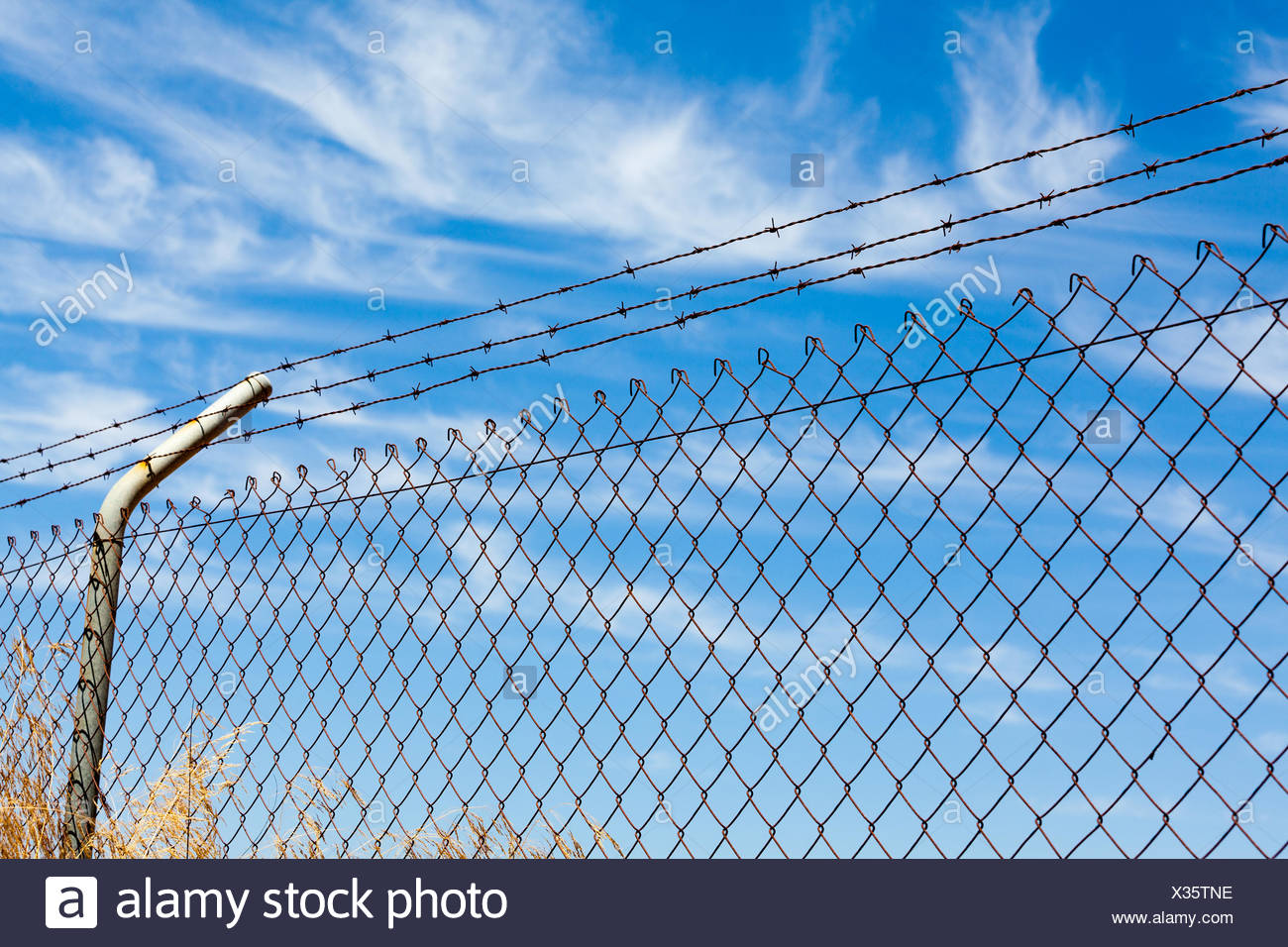 Mesh fence with barbed wire - Stock Image