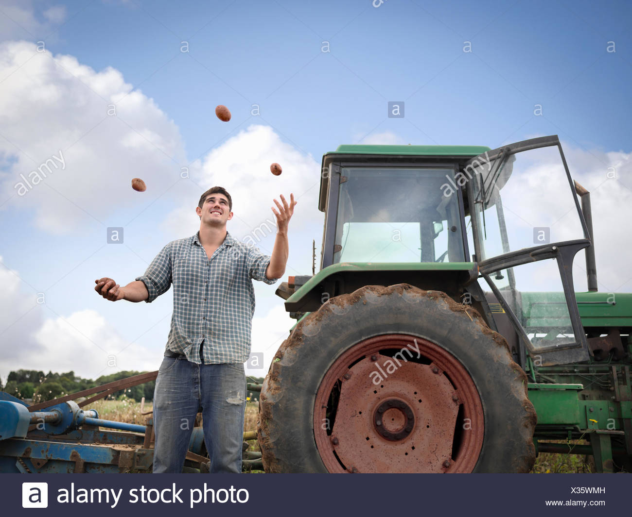 Farmer juggling with freshly harvested organic potatoes - Stock Image