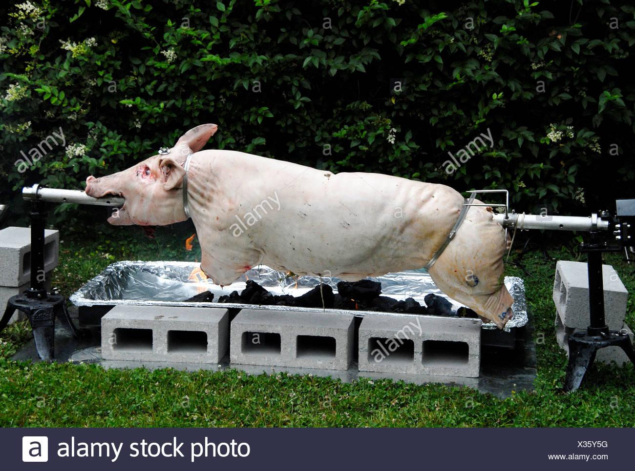 Pig on spit - Stock Image