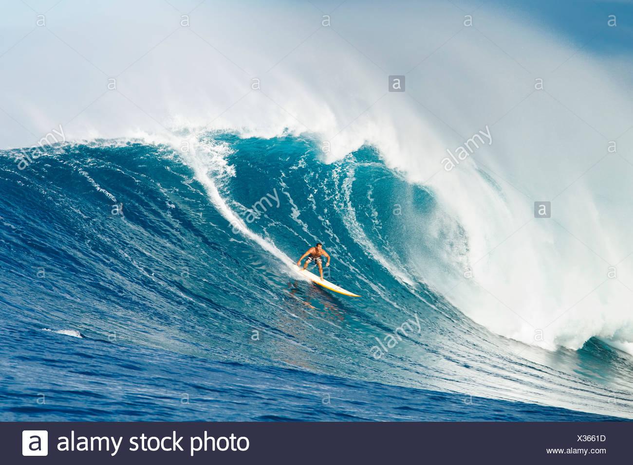 Hawaii Maui Peahi Surfer Rides A Giant Wave At Peahi Also