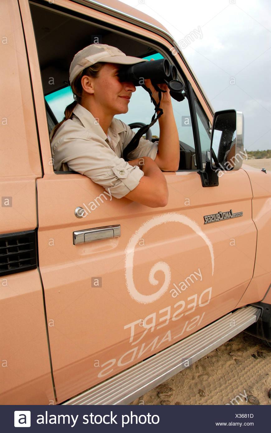 Ranger watching animals, Sir Bani Yas Island, Abu Dhabi, United Arab Emirates, Arabia, Near East, Orient - Stock Image