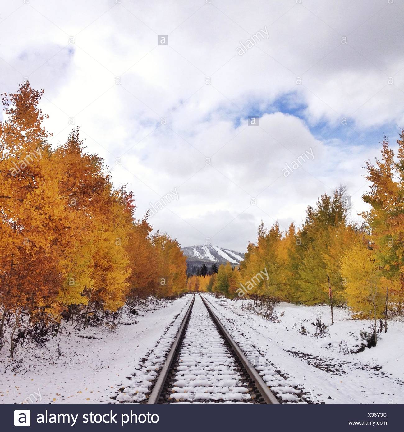 Symmetrical view of railroad trail in snow, and yellow trees - Stock Image