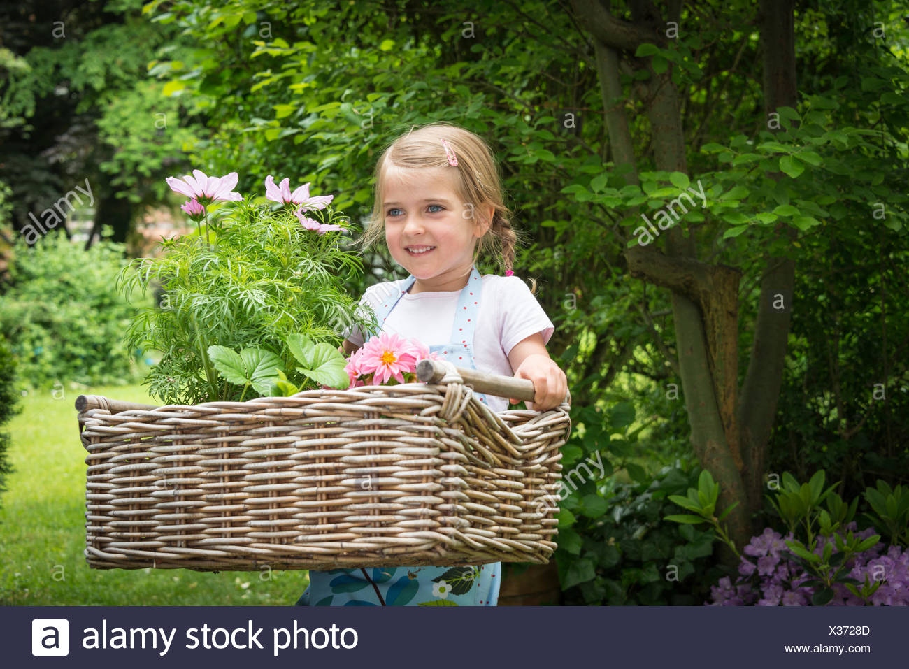 Girl gardening, carrying flowers in basket - Stock Image