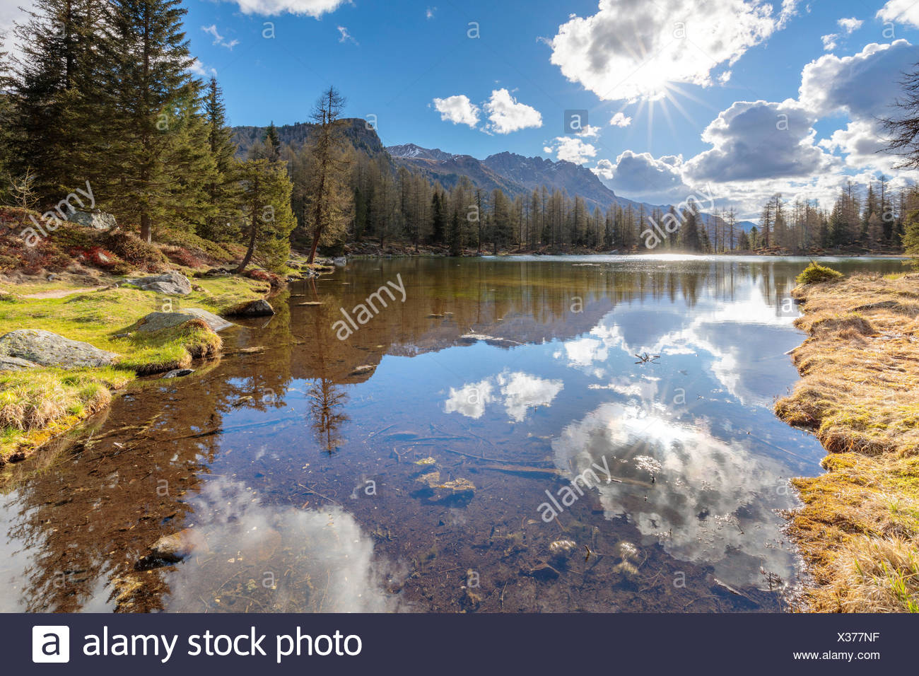 Europe, Italy, Trentino Alto Adige, Moena, Dolomites, the  alpine lake of San Pellegrino surrounded by a forest of firs and larches Stock Photo